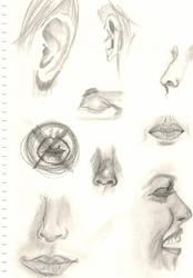 Sketches by lovesfantasystuff