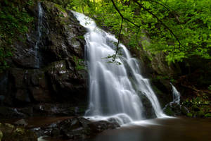 Revisit of Spruce Flats Falls by notneb82