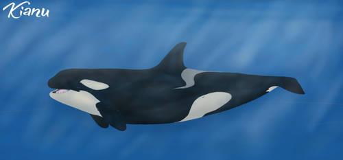 Kianu (2) by CetaceanCreations