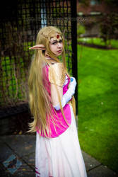 Zelda: Hylian Princess by VandorWolf