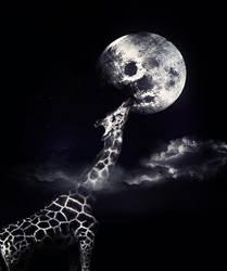 la girafe by lalo87