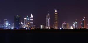 Dubai Cityscape by RSPCA
