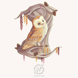 Owl on a Branch by JustineF-Illustrator