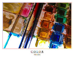 Color by FishEye-lens