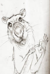Rat-a-Sketch03: 'if you get my drift' by croovman