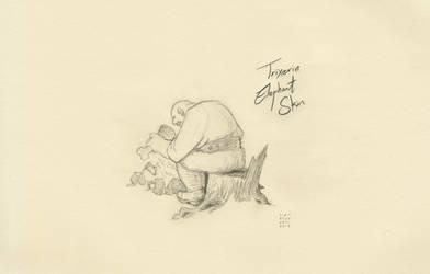 Trixters#6 - Elephant Skin by croovman