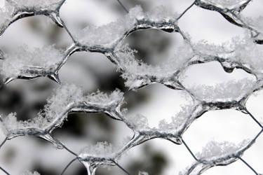 Icy Twist by SilverSymphony