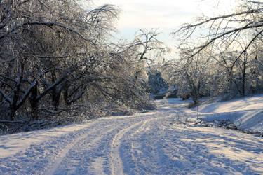 Winter road by SilverSymphony