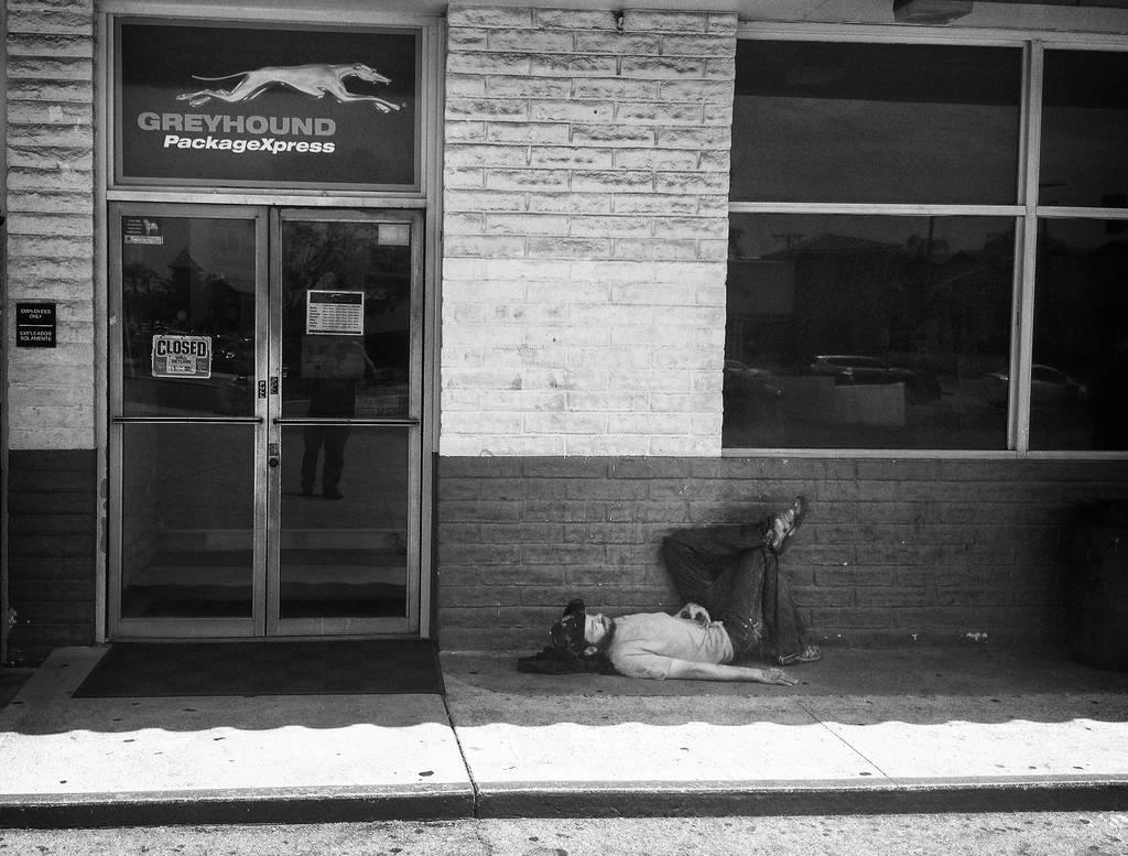 Grayhound by myoung4828