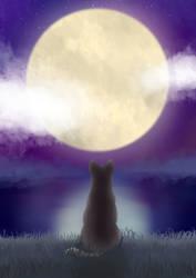 Moonlight by MlleRoxy4