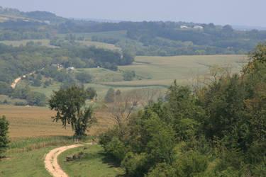 Rolling Hills by Bamzu
