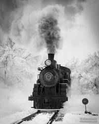 Dashing Through the Snow by CheshirePhotographer