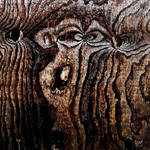 Woodgrain: Angry Monkey by Coigach
