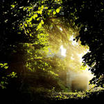 Shine2 by Coigach