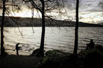 Cumbrian Spring: Windermere Shoreline1 by Coigach