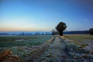 Dawn Colours by Coigach