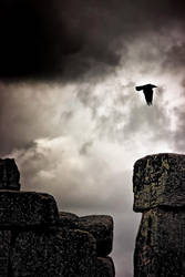 Henge+Raven by Coigach