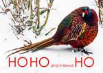 HO HO and indeed HO... by Coigach
