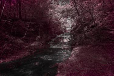 Dunnings Springs IR by mitsubishiman