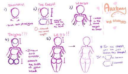 Anatomy Tutorial by jianrou