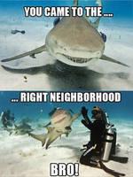 Right Neighborhood! by cosenza987