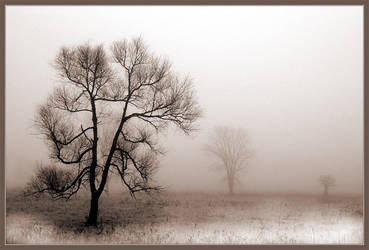 January Dance by IgorLaptev
