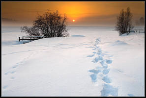 Road to the Sun by IgorLaptev