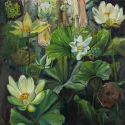 Meditation (Nelumbo lutea) by CoralLemonade