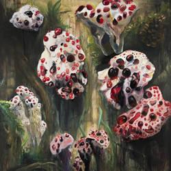 Strawberries and Cream (Hydnellum peckii) by CoralLemonade