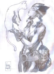 catwoman:here kitty... by wrathofkhan
