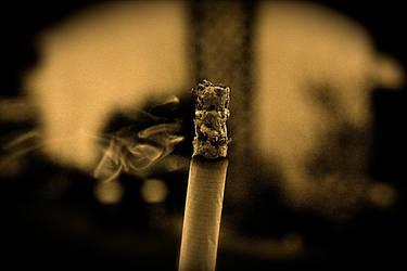 Cigarette by Citoyen-du-monde