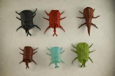 Beetle Display by Dreams-Made-Flesh