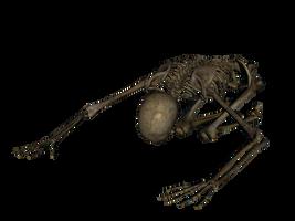 Skeleton - Worshiping by markopolio-stock