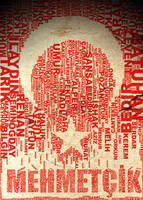 Turkish Flag Typo by omerfarukciftci
