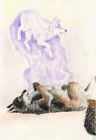 Wolf soul by SaintWolfOfEden