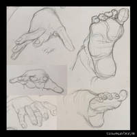 Sketch Dump 3 (hand/feet study) by Shallowpond