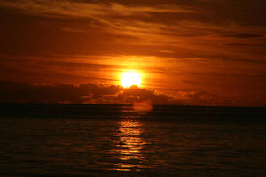 Mauritius Sunset II by TheRealThalion