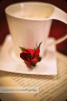 Coffee winters and roses by Jiah-ali