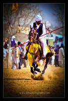Tent pegging1 by Jiah-ali