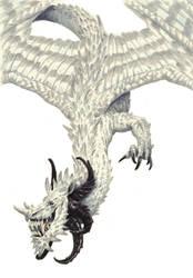 White dragon by eoghankerrigan