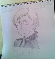 meet my version of Sweden ~ by dantania-dan