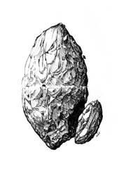 Rock Anatomy by DK19