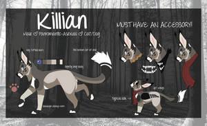 Killian 2k17 by peppeck