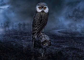 Le veilleur de nuit by Ghislaine-L