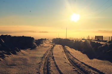 Foggy Dawn by NuclearPoweredPony
