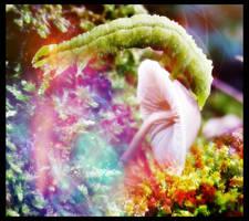 Hookah Smoking Caterpillar. by saraneth672