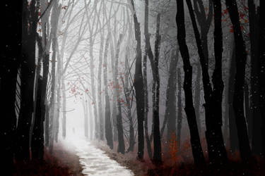 Foggy Forest Speedpaint by saraneth672