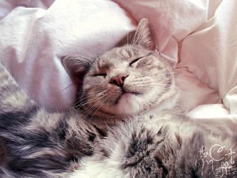 Please hug me while I'm sleeping! by RavenMontoya
