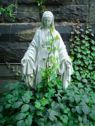 St. Pauls Episcopalian - Mary by OracleOceanus