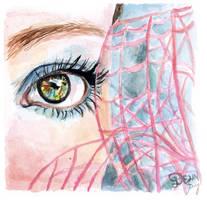 Turquoise Eye in Watercolour by De1in